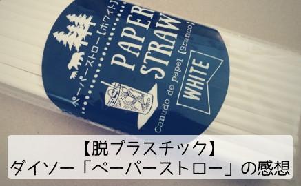 【脱プラスチック】ダイソー「ペーパーストロー」の感想