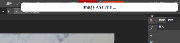 Image Analysis...